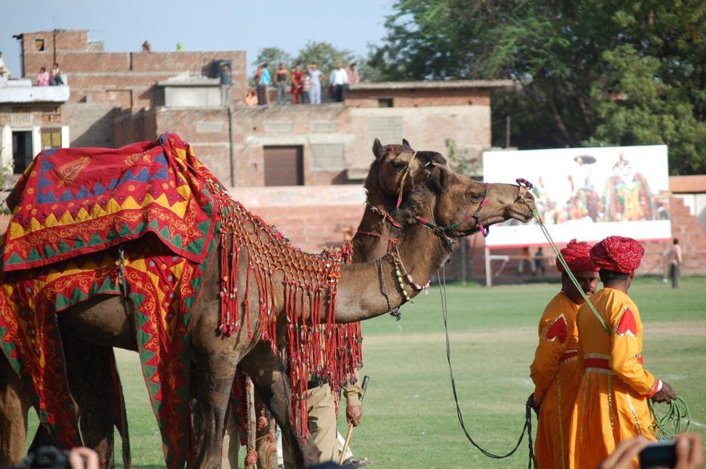 Pushkar Fair Rajasthan