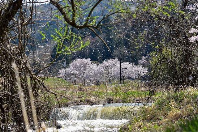 Kathua Kashmir Sightseeing