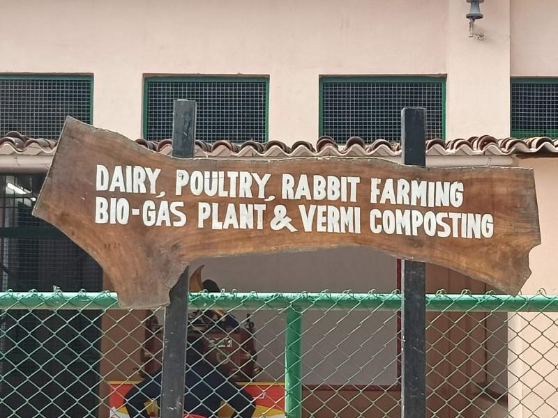 Activity Lawn Pratapgarh Farms